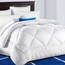TEKAMON All Season Queen Comforter Winter Warm Summer Soft Quilted Down Alternative Duvet Insert with Corner Tabs, Fluffy Reversible Collection for Hotel, Snow White, 88 x 88 inches