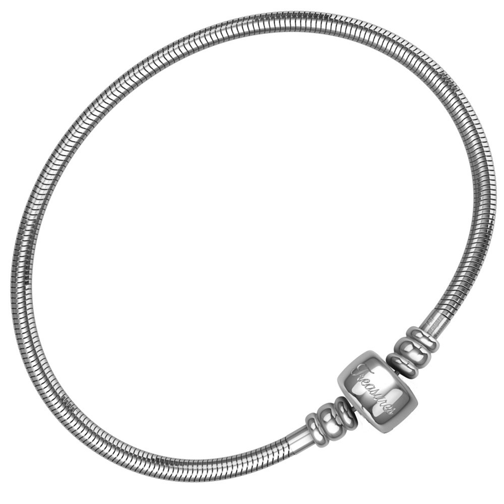 European Charm Bracelet for Women and Girls Bead Charms, Stainless Steel Snake Chain, Barrel Clasp