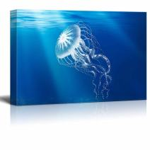wall26 - Under The Sea Canvas Wall Art - A Transparent Jellyfish - Gallery Wrap Modern Home Decor | Ready to Hang - 12x18 inches