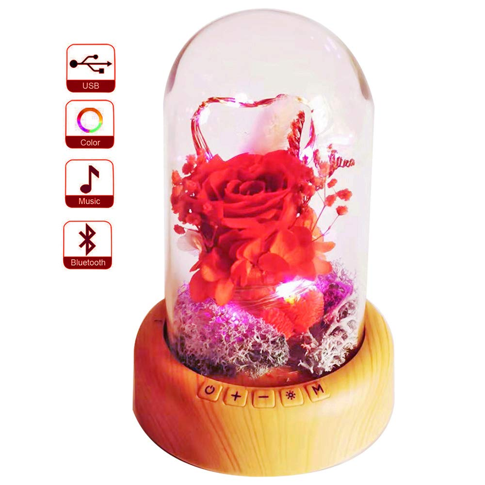 Sweetime Mother S Day Red Rose Night Light Real Eternal Rose In Glass Dome Preserved Rose Flower Lamp With Bluetooth Speaker Forever Flowers Gift For Mom Wife Girlfriend On Mother S Day,Joanna Gaines Shiplap Bedroom