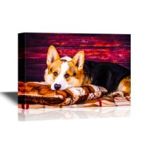 wall26 - Dogs Breeds Canvas Wall Art - Welsh Corgi Pembroke Dog - Gallery Wrap Pet Art for Modern Home Decor | Ready to Hang - 16x24 inches