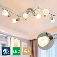 DLLT 6-Light Flexible Track Lighting Rail, Modern Directional Led Spot Ceiling Light Fixture with Glass Shade, E12 Base for Living Room, Dining Room, Bedroom, Kitchen, Brush Steel