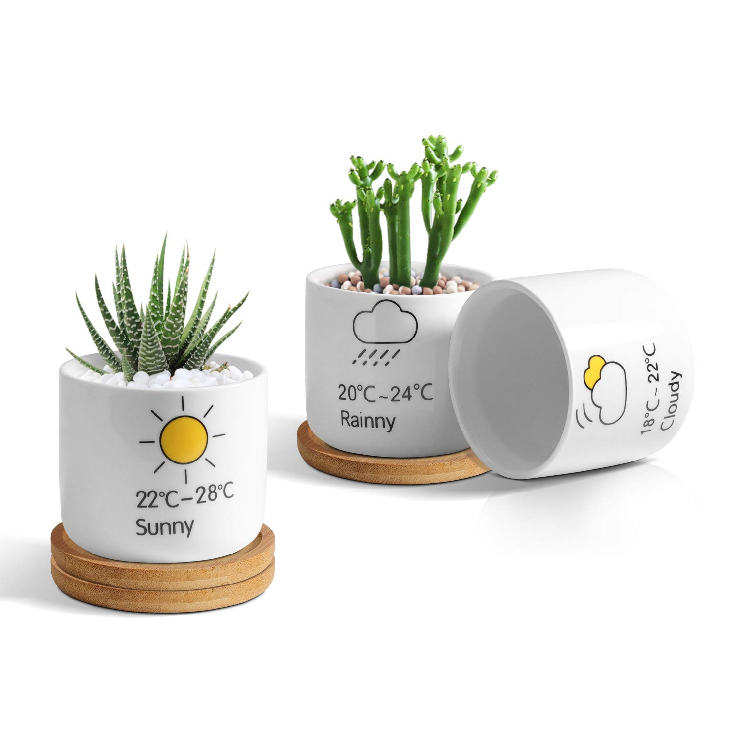 T4U Ceramic Succulent Pot Cartoon Patterns White Round Mini with Tray, Set of 3