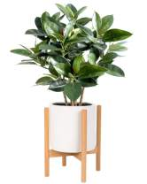 Kingbuy Plant Stand Mid Century Wood Flower Pot Holder, Simple Display Potted Rack, Modern Home Decor (Note: Plant Pot and Plant are not Included), 8inch Natural