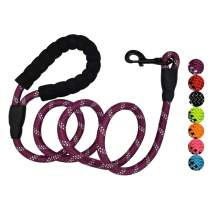 Petmegoo Heavy Duty Reflective - Tangle and Chew Proof Rope with Comfortable Padded Handle for Large, Medium, and Small Dogs | Multicolored Paracord Lightweight Leash 5 ft