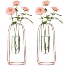 Nuptio Vases Set of 2 Glass Vases with Metal Frame 23.5cm Height, Modern Rose Gold Frame Cylinder Clear Vase Planter Terrariums, Flower Holder Decorations for Wedding Living Room, Office, Party