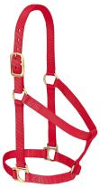 Weaver Leather Basic Non-Adjustable Nylon Horse Halter
