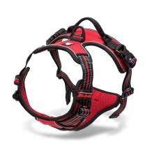 Chai's Choice Best Outdoor Adventure Dog Harness (Red Medium)