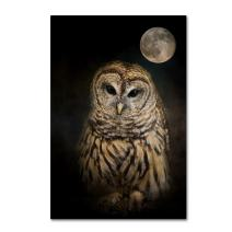 Barred Owl And The Moon by Jai Johnson, 12x19-Inch Canvas Wall Art