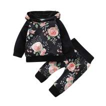 Toddler Baby Girl Clothes Floral Print Hoodies + Pant Long Sleeve Outfit Set Sweatshirt Outfit