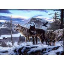 Diamond Painting Kits for Adults Kids, 5D DIY Snow Wolf Diamond Art Accessories with Full Drill for Home Wall Decor - 15.7×11.8Inches
