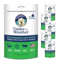 Under the Weather Easy to Digest Bland Dog Food Diet for Sick Dogs - Contains Electrolytes - Gluten Free, All Natural, Freeze Dried 100% Human Grade Meats (6 Pack)
