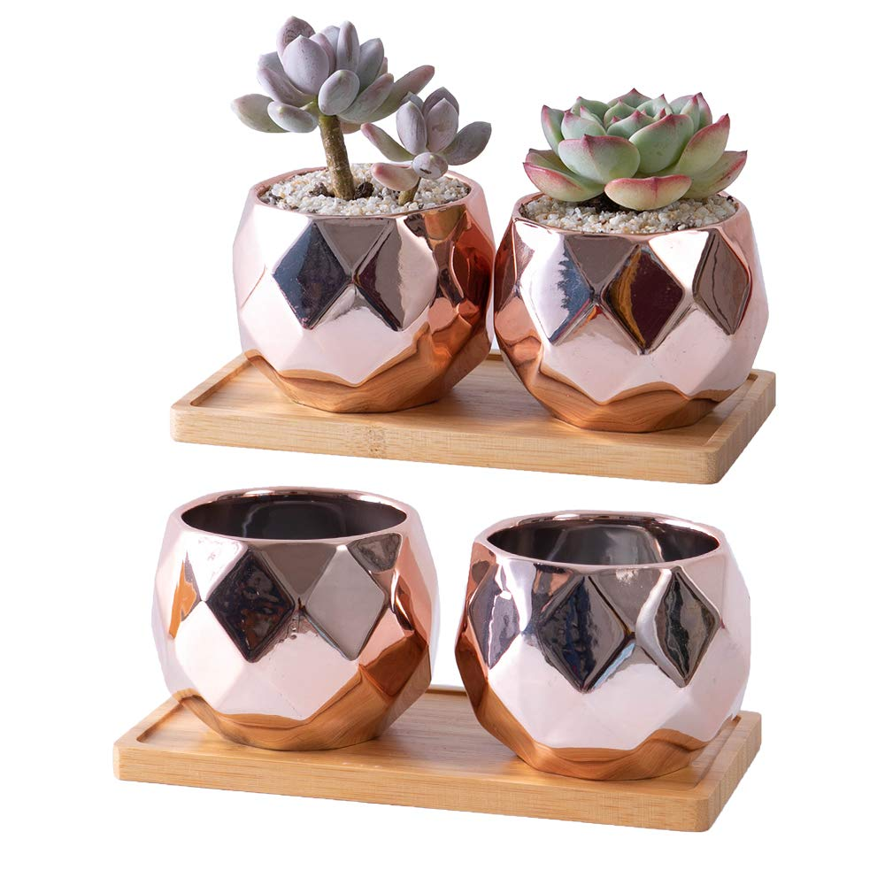 Succulent Plant Pots - 4 inch Ceramic Succulent Planter - Small Cactus Planter Simple Flower Pots with Drainage Holes and Bamboo Tray- Rose Gold