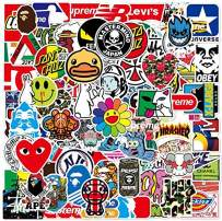 Cool Stickers for Adults Teens 100 Packs Stickers for Laptop,Skateboard,Water Bottles