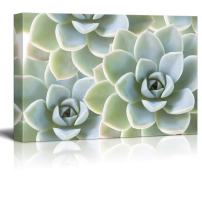 wall26 Canvas Print Wall Art - Succulent Plants on Retro Style Background - Gallery Wrap Modern Home Decor | Ready to Hang - 32x48 inches