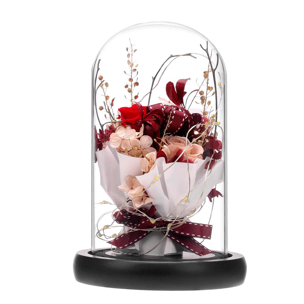 ANLUNOB Preserved Fresh Flower with LED Light Handmade Rose Mother Day - Forever Flower Gift in Glass Dome - Valentine`s Day Gift