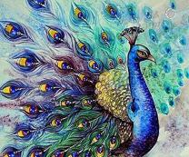 DIY 5D Diamond Painting Kit, Crystal Rhinestone Paint with Diamonds Embroidery Pictures Arts Craft for Home Wall Decor - Peacock 12x16inch