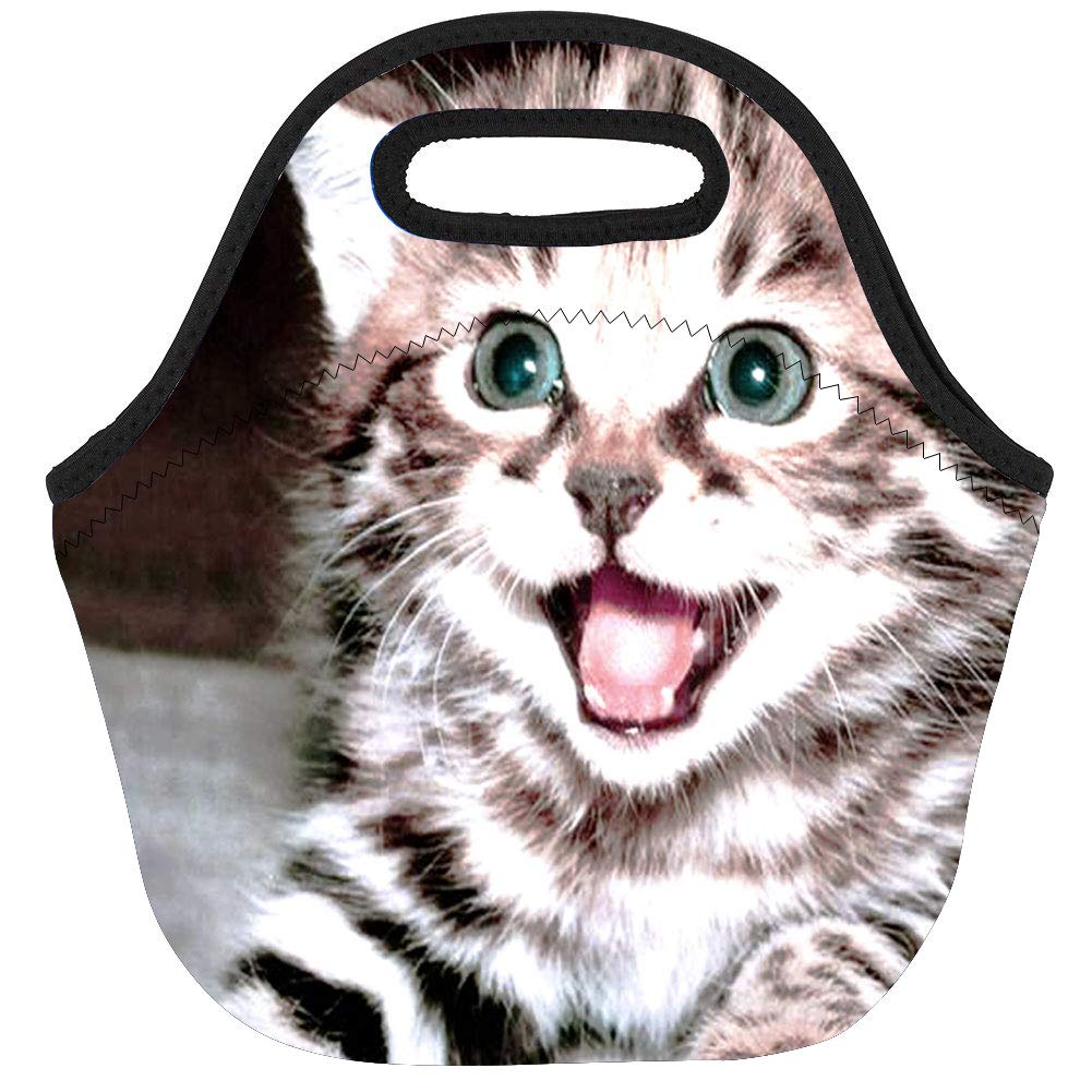 Jumppmile Cute Cat Insulated Neoprene Lunch Bag lunchbox Carrying baby bag for Kids School Work Travel Outdoor