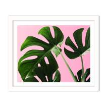 Humble Chic Framed Wall Decor - Fine Art Plants Picture Poster Prints in White Frame for Home Decorations Living Dining Room Bedroom Bathroom Office - Monstera Palm Plant Leaf, 16x20 Horizontal