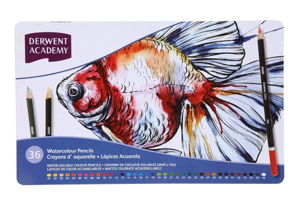 Derwent Academy Watercolor Pencils, Metal Tin, 36 Count (2300226)