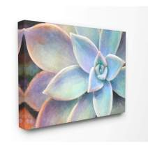 Stupell Industries Succulent Plant Vibrant Bloom Painting Canvas Wall Art, 30 x 40, Design by Artist Joshua Chace