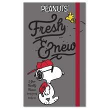 2020-2021 Peanuts Pocket Planner, 2 Year Planner (DDPP262820)