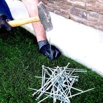 """USA MADE Synthetic Grass Landscape, (15 Pounds Bag) 5.5"""" Turf Nails / Stakes, Galvanized Boxed Spikes for Securing Artificial Turf Products (AN AVERAGE OF 25% MORE NAILS!) Approximately 450 Nails"""