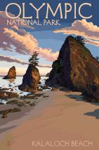 Olympic National Park, Washington - Kalaloch Beach 43274 (16x24 SIGNED Print Master Art Print - Wall Decor Poster)
