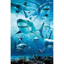 UPMALL DIY 5D Diamond Painting by Number Kits, Full Drill Crystal Rhinestone Embroidery Pictures Arts Craft for Home Wall Decoration Shark 12.9×20Inches