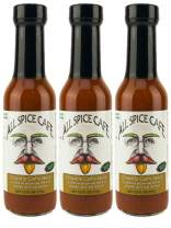 Chipotle Garlic Sauce from All Spice Cafe - Delicious Flavor Blended with Heat - Medium Spice Gourmet Hot Sauce (Pack of 3)