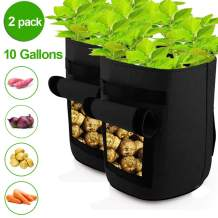 KUAHAIHINTERAL Garden Plant Grow Bag Large 10 Gallon Fabric Potato Growing Bags with Visualized Window, Large Vegetables Planters Pots Container for Garden Nursery Plants (10 Gallon) (Black)