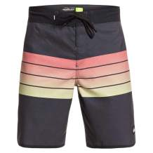 Quiksilver Men's Everyday Grass Roots 19 Boardshort Swim Trunk