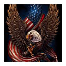 UPMALL DIY 5D Diamond Painting by Number Kits,Full Drill Crystal Rhinestone Embroidery Pictures Arts Craft for Home Wall Decoration Eagle & American Flag 11.8×11.8Inches