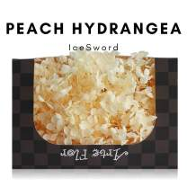 IceSword Preserved Hydrangea, Preserved Flowers Last 1 Year, 1 Box of 20g, Eternal Everlasting Hydrangea, Real Texture, Artificial Flowers, no Watering, Non-Toxic (20g) - (Peach, Hydrangea)