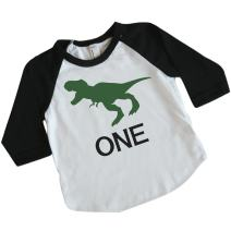 Bump and Beyond Designs Dinosaur Birthday Shirt Boy 1st Birthday Outfit Dino Birthday