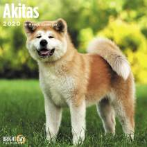 2020 Akitas Wall Calendar by Bright Day, 16 Month 12 x 12 Inch, Cute Dog Puppy Animals Inu Hachiko Canine