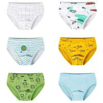 KATCOCO Little Boys Briefs Dinosaur Truck Shark Cotton Soft Toddler Underwear 6 Pack (Car + King Lion, 9-10 Years)