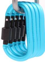 Emoly Locking Carabiner Clip D Shape Spring-Loaded Gate Aluminum Keychain Gate Buckle for Home, Rv, Camping, Fishing, Hiking, Traveling and Keychain, 8 Pack (Light Blue)