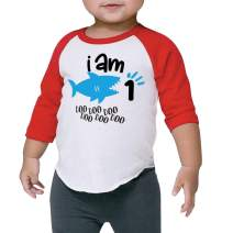 One Birthday Shark Shirt Boys 1st Birthday Shark Outfit