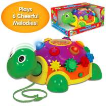 The Learning Journey Early Learning – Funtime Activity Turtle – Baby & Toddler Toys & Gifts for Boys & Girls Ages 12 Months & Up – Award-Winning Toy