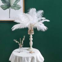 """12-14 inches (30~35cm) Real Natural Ostrich Feathers Great Decorations for Home Party Wedding Centerpieces White (12-14"""" 20pcs)"""