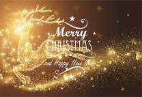 Baocicco 7x5ft Merry Christmas and Happy New Year Backdrop Golden Shining Dot Deer Reindeer Golden Ball Stars Halos Bokeh Photography Background Festival Christmas Eve New Year Eve Portrait Props