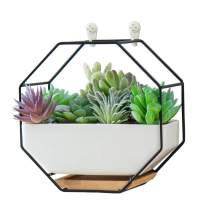 ORZ Haning Succulent Planter Cactus Pots Wall Mount with Drainage Ceramic Pot for Small Vaux Plant Indoor Decor, Black