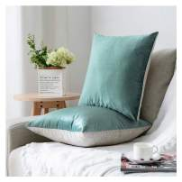 HPUK Pack of 2 Velvet Throw Pillow Cover Cozy Solid Pillowcase Decorative Cushion Cover for Couch Sofa Bedroom Office car, 17x17, Duck Egg, Reversible