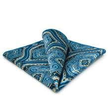 S&W SHLAX&WING Ties for Men Blue Yellow Paisley Necktie for Wedding Party