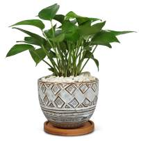 5.5in Large Ceramic Round Planter Brown Geometry Succulent Planter Flower Pots Outdoor Indoor Planter with Bamboo Tray