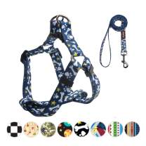 QQPETS Dog Harness and Leash Set Adjustable Back Clip No Pull Quick Fit/Release Halter Harness with Heavy Duty Leash 5FT Long for Extra Small Medium Large Breed Dogs Training Easy Walk