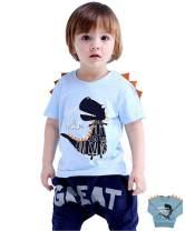 Little Boys Dinosaur Sweatshirt Toddler Top T-Shirt T-Rex Dino Baby Long Sleeve Clothes