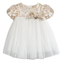 Baby Girl Princess Dress Wedding Party Birthday Lace Dress for Toddler 0-5 Years