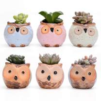 Yontree Ceramic Owl Pot Succulent,Cactus,Flower Planter Bonsai Pots with Free Bamboo Trays for Home & Office Decoration,Set of 6